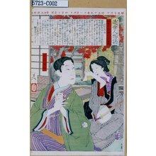 Tsukioka Yoshitoshi: 「近世人物誌」「やまと新聞附録」 「第二」「中村芝翫の妻」 - Tokyo Metro Library
