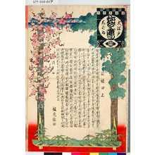 無款: 「大江戸しばゐねんぢうぎやうじ 目録口上」 - 東京都立図書館