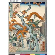 芳瀧: 「浪花百景」 「寿法寺」 - Tokyo Metro Library