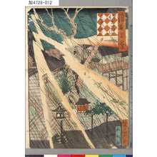 芳瀧: 「浪花百景」 「佐奈田山三光宮」 - Tokyo Metro Library