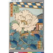 芳雪: 「浪花百景」 「吉助牡丹盛り」 - 東京都立図書館
