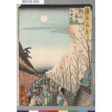 芳瀧: 「浪花百景」 「新町廓中九軒夜桜」 - 東京都立図書館