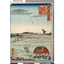芳瀧: 「浪華百景」 「舎利寺」 - Tokyo Metro Library