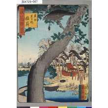芳雪: 「浪花百景」 「広田星カ池稲荷」 - Tokyo Metro Library