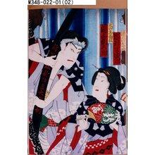 Toyohara Chikanobu: 「滝元のおやま 岩井半四郎」「大山参り菊松 尾上菊五郎」 - Tokyo Metro Library