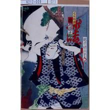 Utagawa Kunisada III: 「くも介権 市川権十郎」 - Tokyo Metro Library