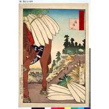 Kobayashi Kiyochika: 「武藏百景之内」 「道灌山」 - Tokyo Metro Library