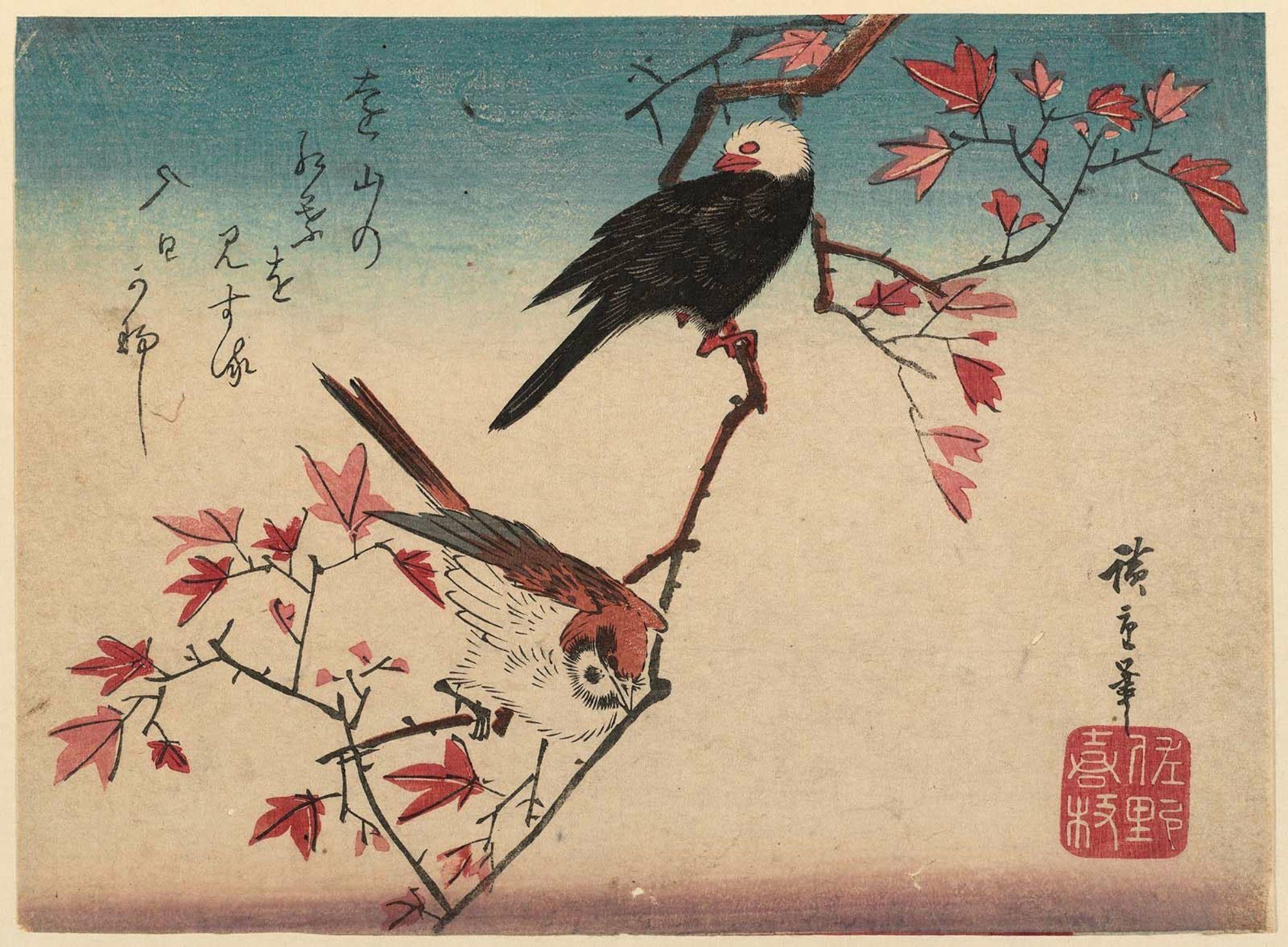 Utagawa Hiroshige: Sparrow and White-headed Bird on Maple