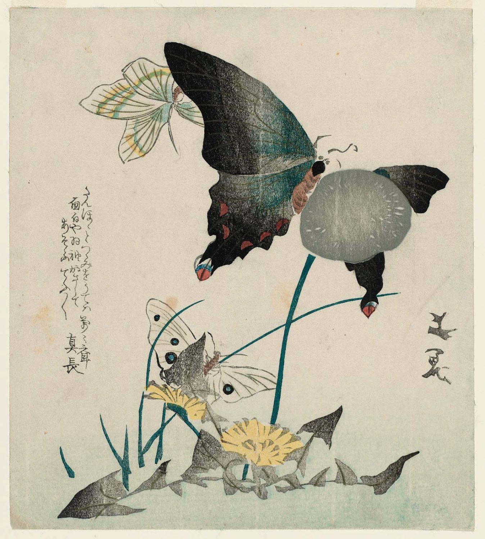 谷文晁の画像 p1_26