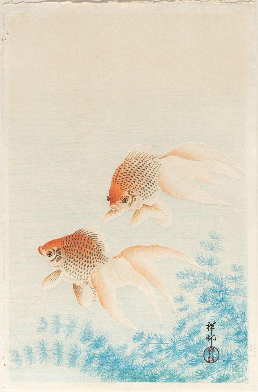 小原古邨: Two Goldfish - ボス...