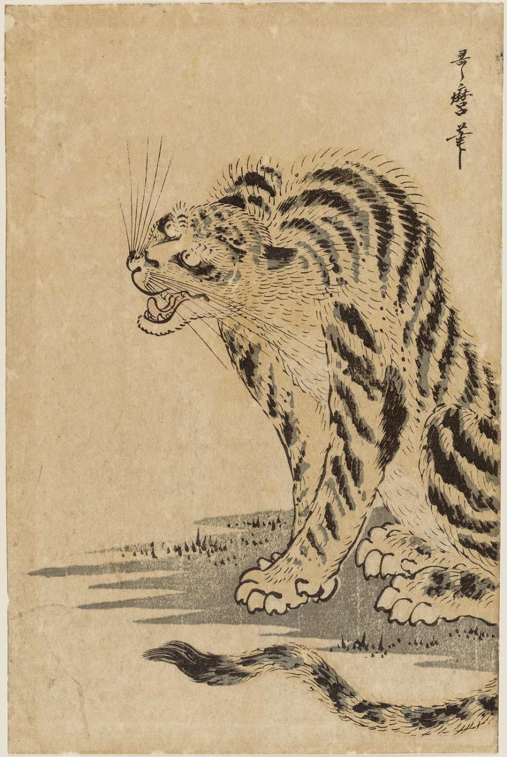 Kitagawa Utamaro Tiger Museum Of Fine Arts Ukiyo E Search