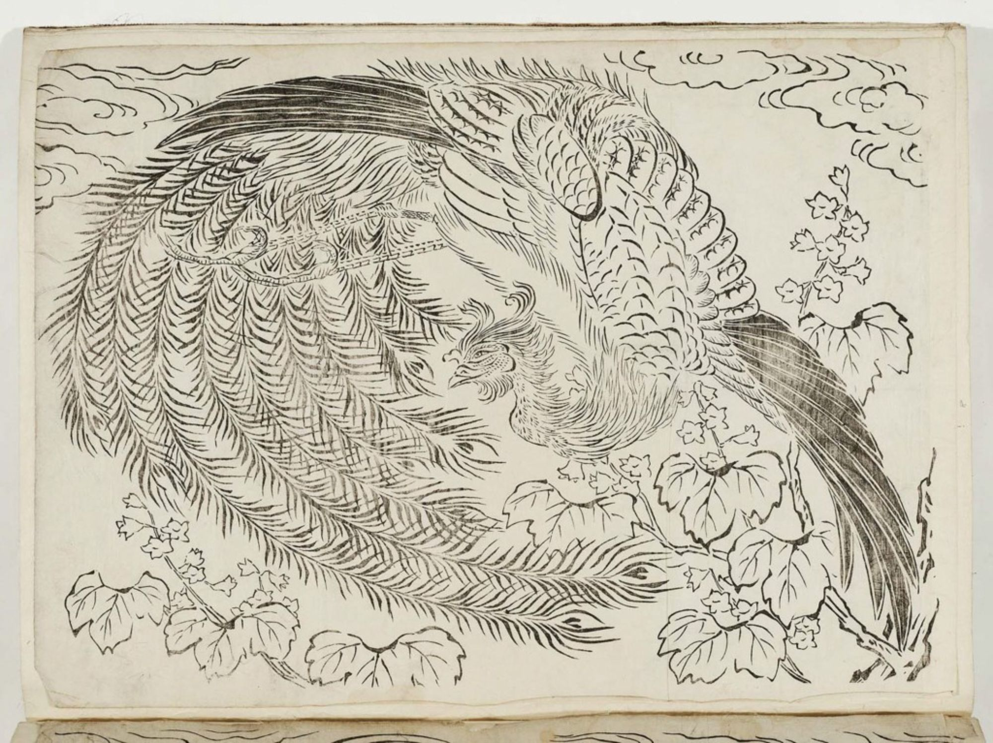Unknown Phoenix And Paulownia Museum Of Fine Arts