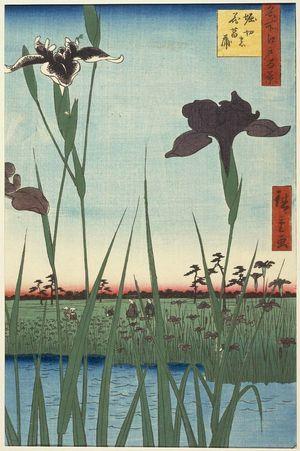 Utagawa Hiroshige: Horikiri Iris Garden (Horikiri no hanashôbu), from the series One Hundred Famous Views of Edo (Meisho Edo hyakkei) - Museum of Fine Arts