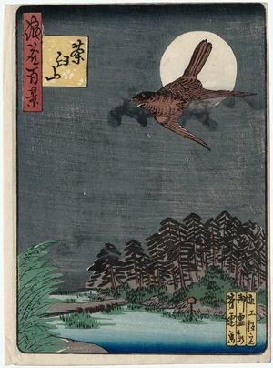 Nansuitei Yoshiyuki: Chausu-yama Hill (Chausu-yama), from the series One Hundred Views of Osaka (Naniwa hyakkei) - Museum of Fine Arts