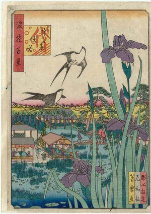 Nansuitei Yoshiyuki: Irises at Urae (Urae kakitsubata), from the series One Hundred Views of Osaka (Naniwa hyakkei) - Museum of Fine Arts