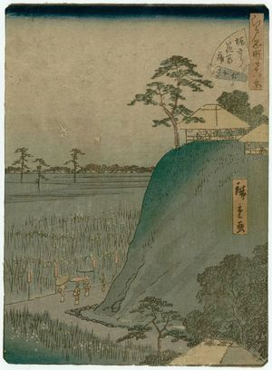 二歌川広重: No. 16, Irises at Horikiri (Horikiri hanashôbu), from the series Forty-Eight Famous Views of Edo (Edo meisho yonjûhakkei) - ボストン美術館