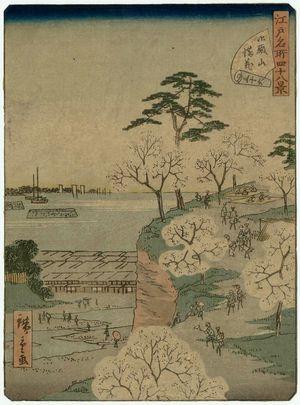 二歌川広重: No. 36, Cherry Blossoms in Full Bloom at Goten-yama (Goten-yama manka), from the series Forty-Eight Famous Views of Edo (Edo meisho yonjûhakkei) - ボストン美術館