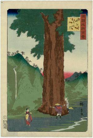 Utagawa Hiroshige II: The Yatate Cedar Tree in Kai Province (Kôshû Yatate sugi), from the series One Hundred Famous Views in the Various Provinces (Shokoku meisho hyakkei) - Museum of Fine Arts