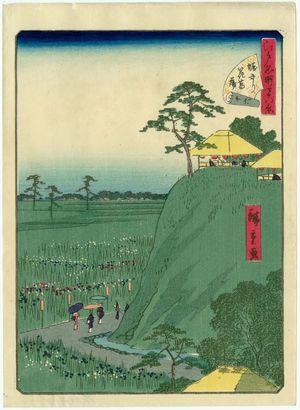 二歌川広重: No. 16, Irises at Horikiri (Horikiri hanashôbu), from the series Forty-Eight Famous Views of Edo (Edo meisho yonjûhakkei) - ボストン美術館