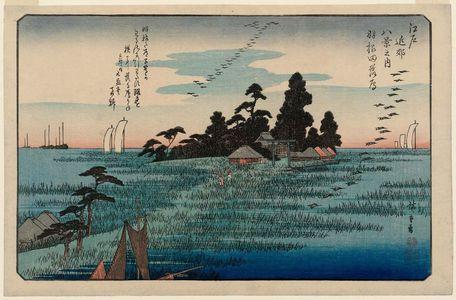 Sanoya Kihei: Descending Geese at Haneda (Haneda no rakugan), from the series Eight Views in the Environs of Edo (Edo kinkô hakkei no uchi) - ボストン美術館