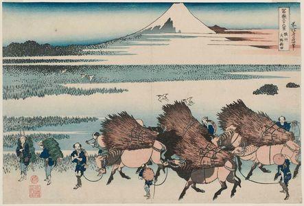 葛飾北斎: The Paddies of Ôno in Suruga Province (Sunshû Ôno-shinden), from the series Thirty-six Views of Mount Fuji (Fugaku sanjûrokkei) - ボストン美術館