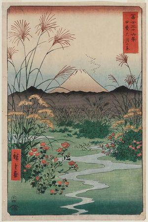 Utagawa Hiroshige: Ôtsuki Plain in Kai Province (Kai Ôtsuki no hara), from the series Thirty-six Views of Mount Fuji (Fuji sanjûrokkei) - Museum of Fine Arts