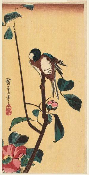 歌川広重: Bird on Camellia Branch - ボストン美術館