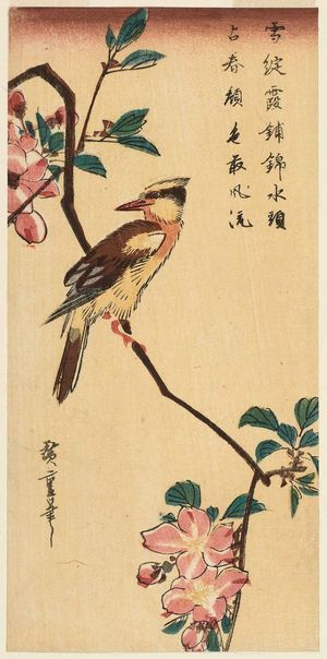 Utagawa Hiroshige: Oriole on a Branch of Mountain Cherry - Museum of Fine Arts