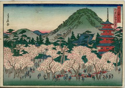 代長谷川貞信: Cherry Blossoms in Full Bloom at Ninna-ji Temple in Omuro (Omuro Ninnaji hanazakari), from the series Famous Places in the Capital (Miyako meisho no uchi) - ボストン美術館