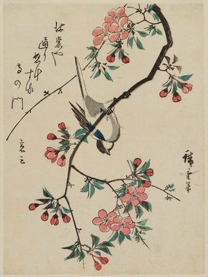 Utagawa Hiroshige: Bird Upside-down on Aronia Branch - Museum of Fine Arts