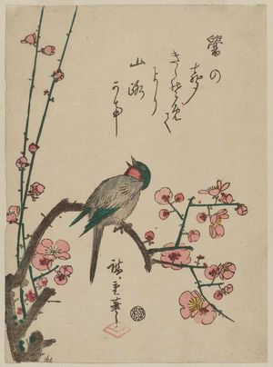 Utagawa Hiroshige: Bird on Red Plum Branch - Museum of Fine Arts