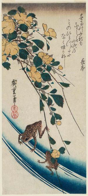 Utagawa Hiroshige: Yellow Rose (Yamabuki) and Frogs - Museum of Fine Arts
