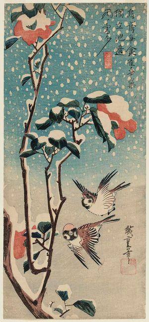 歌川広重: Sparrows and Camellia in Snow - ボストン美術館
