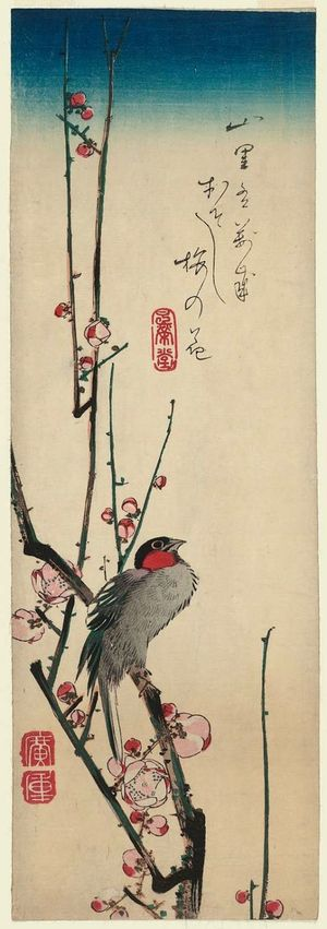 歌川広重: Red-cheeked Bird and Red Plum Blossoms - ボストン美術館