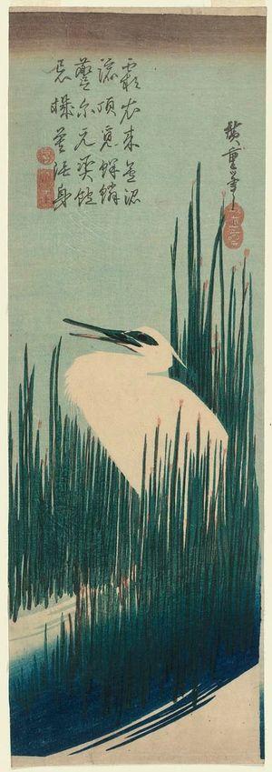 歌川広重: White Heron and Rushes - ボストン美術館