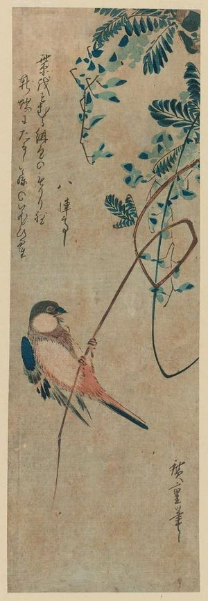 Utagawa Hiroshige: Finch on Wisteria Vine - Museum of Fine Arts