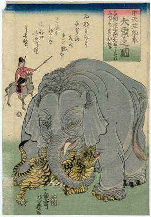 歌川芳豊: The Great Elephant Imported from Central India (Chû Tenjiku hakurai dai zô no zu) - ボストン美術館