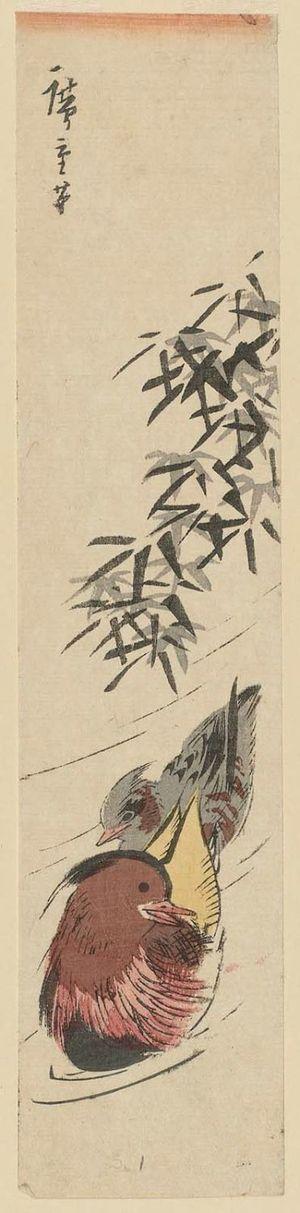 Utagawa Hiroshige: Mandarin Ducks and Bamboo - Museum of Fine Arts