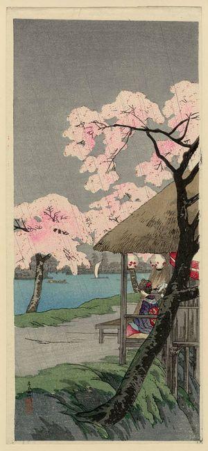 Takahashi Hiroaki: The Sumida River (Sumidagawa) - Museum of Fine Arts
