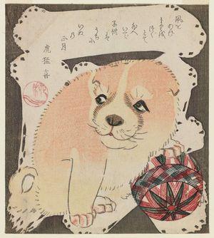 柳川重信: Puppy Playing with a Ball - ボストン美術館