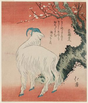 Totoya Hokkei: Goat Standing by a Plum Tree - Museum of Fine Arts
