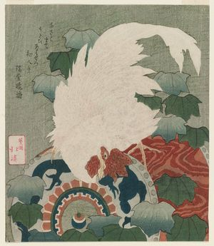 Totoya Hokkei: White Rooster on a Drum - Museum of Fine Arts