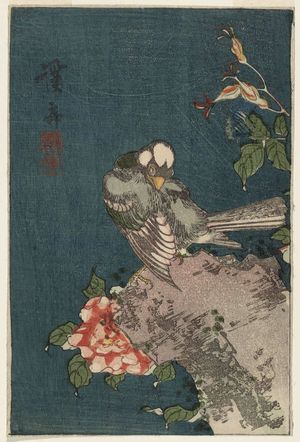 Keisai Eisen: Finch and Roses - Museum of Fine Arts
