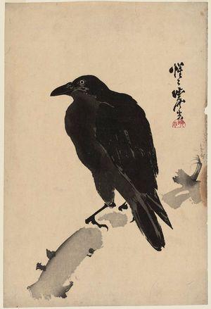 Kawanabe Kyosai: Black Crow - Museum of Fine Arts