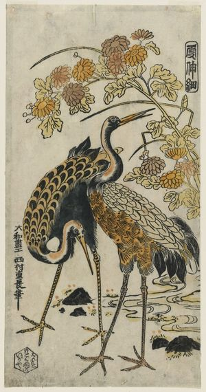 西村重長: Cranes and Chrysanthemums, from the series Kashinsai - ボストン美術館