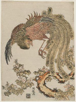 磯田湖龍齋: Phoenix and Paulownia Tree - ボストン美術館