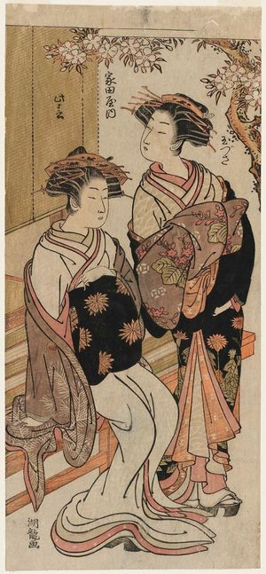 Isoda Koryusai: Tamazusa and Konoharu of the Iedaya - Museum of Fine Arts