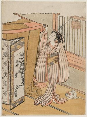 磯田湖龍齋: Young Woman Hanging a Mosquito Net, with Insect Cage and Cat - ボストン美術館