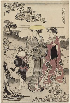 細田栄之: Kiyomizu Temple (Kiyomizu), from the series Fashionable Versions of the Seven Komachi (Fûryû nana Komachi) - ボストン美術館