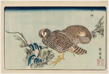 北尾政美: Partridges (Shako) and Rapids, reprinted from the album Kaihaku raikin zui (A Compendium of Pictures of Birds Imported from Overseas) - ボストン美術館